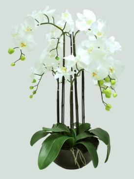 6 STEMS 75CM ARTIFICIAL ORCHID WITH BLACK POT