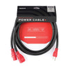 D'Addario IEC to NEMA Power Cable+ 10ft