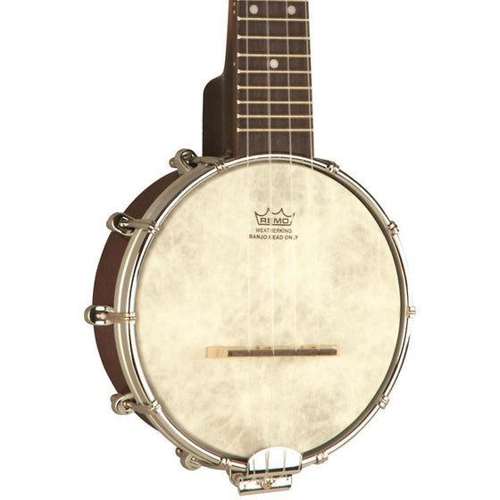 Recording King Banjolele