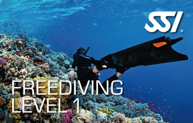 Sold Out // Annual Salt Sister Freedive camp - SSI level 1