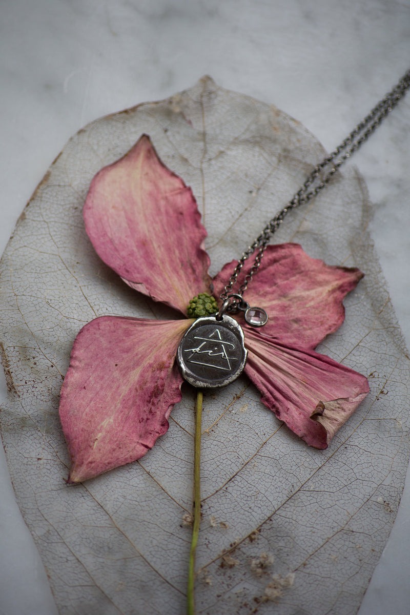 silver air sign medallion necklace on pink flower and leaf skeleton