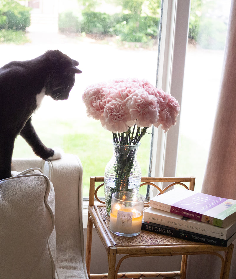 flowers, candle, books, cat