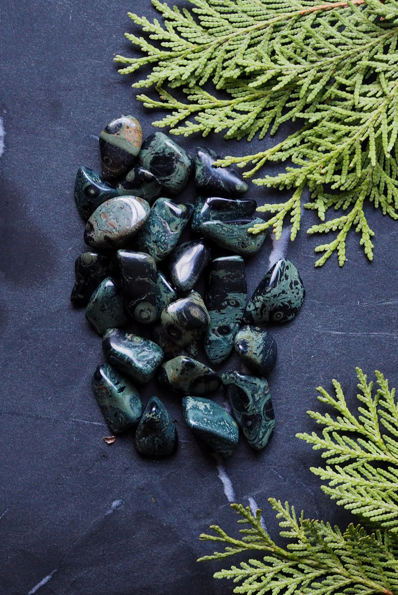 Kambaba Jasper- A Crystal Ally for Winter Solstice