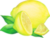 Lemon Essential Oil from Essentially Co