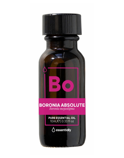 Boronia Absolute Pure Australian Native Essential Oil (5%) in Organic Jojoba - Essentially Co Australia