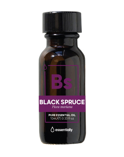 Black Spruce Pure Organic Essential Oil - Essentially Co Australia