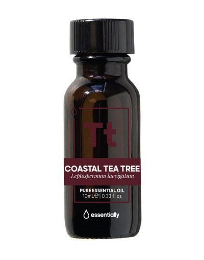 Coastal Tea Tree Pure Australian Native Essential Oil - Essentially Co Australia