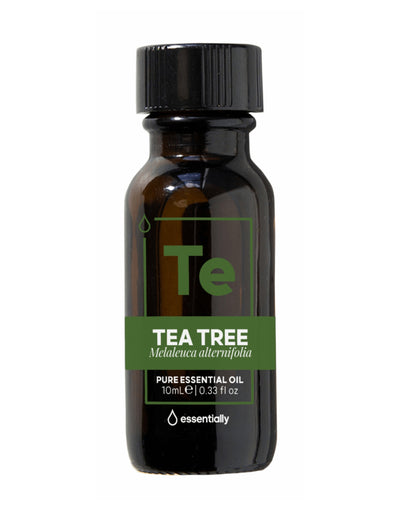 Tea Tree Pure Australian Native Essential Oil - Essentially Co Australia
