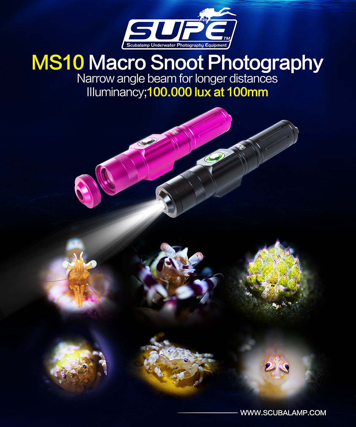 Macro Snoot Light - MS10 (100.000 lux at 100mm)