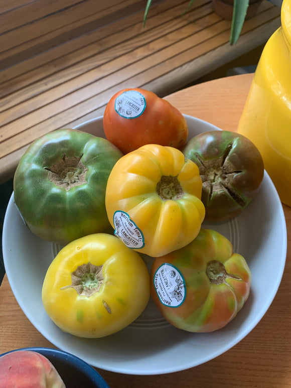 Organic Local Heirloom Tomatoes