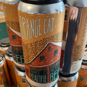Fat Orange Cat - This is not my beautiful beer