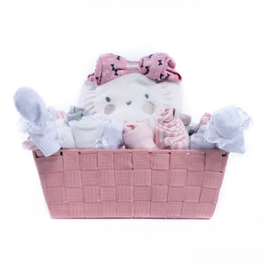 Baby Boy or Girl Gift Basket Set