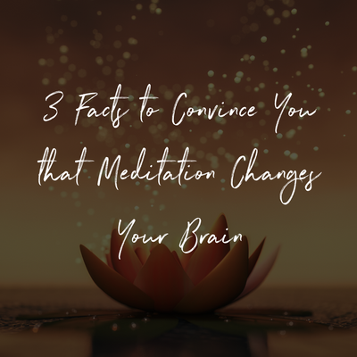 3 Facts to Convince You that Meditation Changes Your Brain