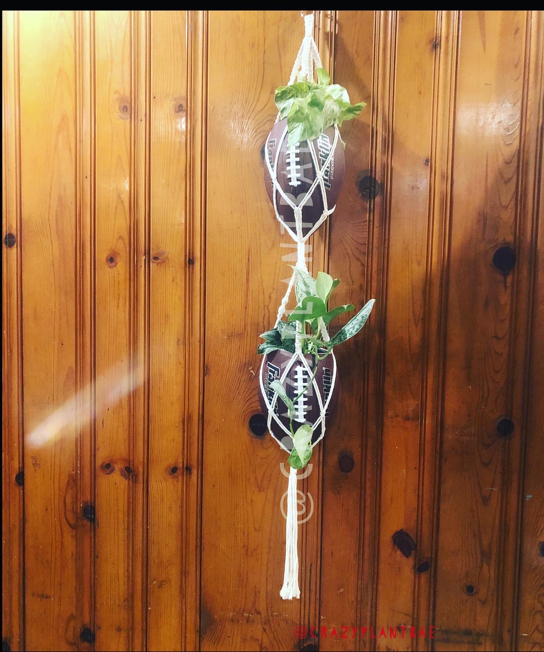 Double Hanging Footballs with Pothos