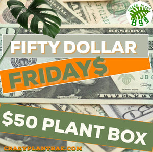 Fifty Dollar Fridays