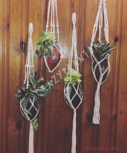 Single Hanging Footballs with Snake Plant