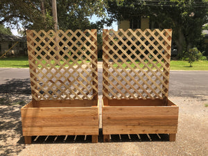 Cedar Raised Planters with Ladder Trellis