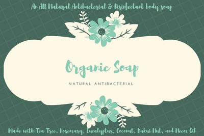Natural Antibacterial Soap 3 pk P