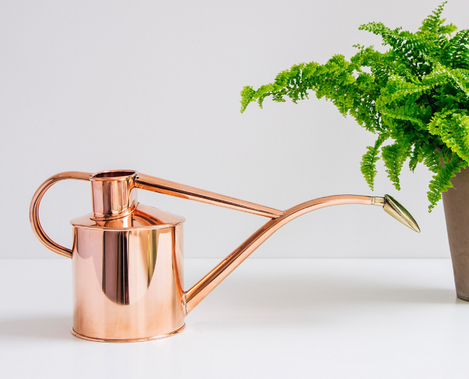 Haws Copper 1L Watering Can