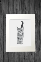 Load image into Gallery viewer, Kitten Print