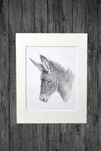 Load image into Gallery viewer, Donkey Print