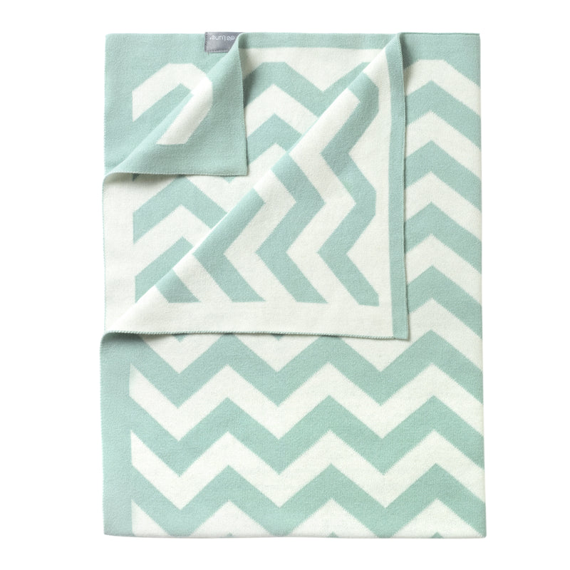 Chevron Blanket in Mint