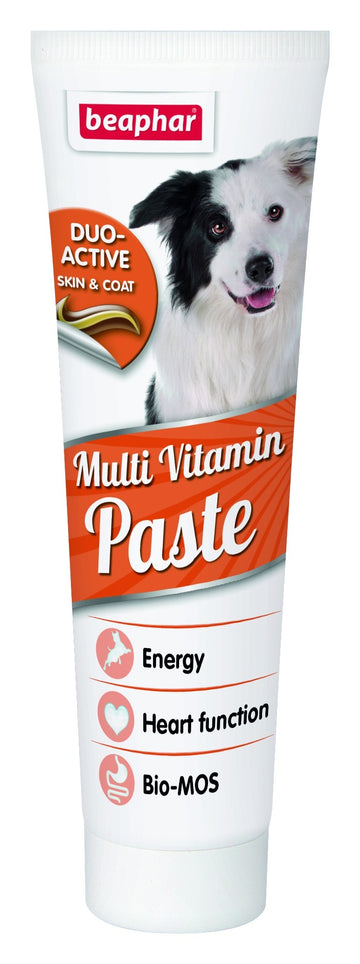 DUO ACTIVE PASTE MULTIVITAMIN DOG