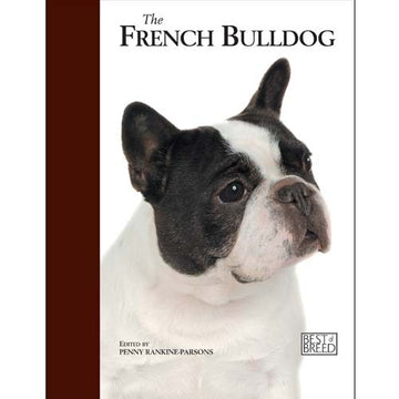 FRENCH BULLDOG - BEST OF BREED