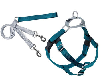 FREEDOM NO-PULL HARNESS AND LEASH - TEAL /1""