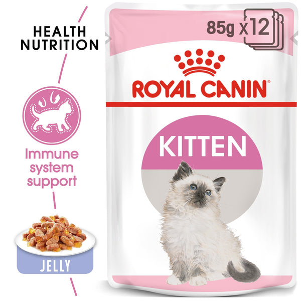 FELINE HEALTH NUTRITION KITTEN JELLY (WET FOOD - POUCHES) (4599674208309)