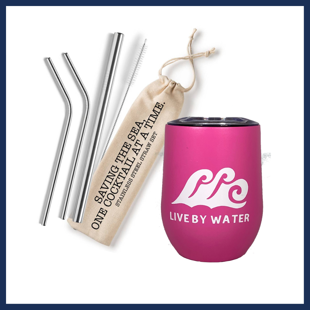 Wine Tumbler & Reusable Straw Set Gift Package