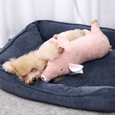 Snuggly Pig Toy