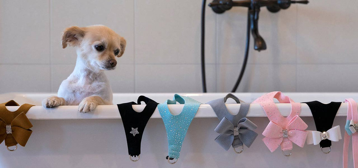 Luxury Dog Harnesses