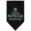 Doggy Stylz Dog-products New Black / Small Mister Pinch Charming Screen Print Bandana