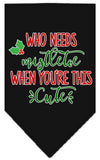 Doggy Stylz Dog-products New Black / Small Who Needs Mistletoe Screen Print Bandana