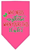 Doggy Stylz Dog-products New Bright Pink / Small Who Needs Mistletoe Screen Print Bandana