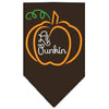 Doggy Stylz Dog-products New Pet Products Brown / Small Lil Punkin Screen Print Bandana