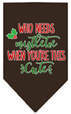 Doggy Stylz Dog-products New Cocoa / Small Who Needs Mistletoe Screen Print Bandana