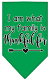 Doggy Stylz Dog-products New Emerald Green / Small I Am What My Family Is Thankful For Screen Print Bandana