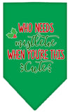 Doggy Stylz Dog-products New Emerald Green / Small Who Needs Mistletoe Screen Print Bandana