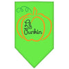 Doggy Stylz Dog-products New Pet Products Green / Small Lil Punkin Screen Print Bandana