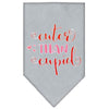 Doggy Stylz Dog-products New Grey / Small Cuter Than Cupid Screen Print Bandana