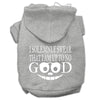 Doggy Stylz Dog-products New Pet Products Grey / Small Up To No Good Screen Print Pet Hoodies Size