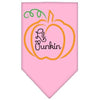 Doggy Stylz Dog-products New Pet Products Light Pink / Large Lil Punkin Screen Print Bandana