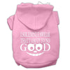 Doggy Stylz Dog-products New Pet Products Light Pink / XXL Up To No Good Screen Print Pet Hoodies Size
