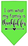 Doggy Stylz Dog-products New Lime Green / Small I Am What My Family Is Thankful For Screen Print Bandana