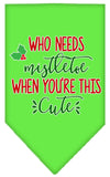 Doggy Stylz Dog-products New Lime Green / Small Who Needs Mistletoe Screen Print Bandana