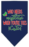 Doggy Stylz Dog-products New Navy Blue / Small Who Needs Mistletoe Screen Print Bandana