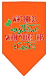 Doggy Stylz Dog-products New Orange / Small Who Needs Mistletoe Screen Print Bandana