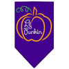 Doggy Stylz Dog-products New Pet Products Purple / Small Lil Punkin Screen Print Bandana